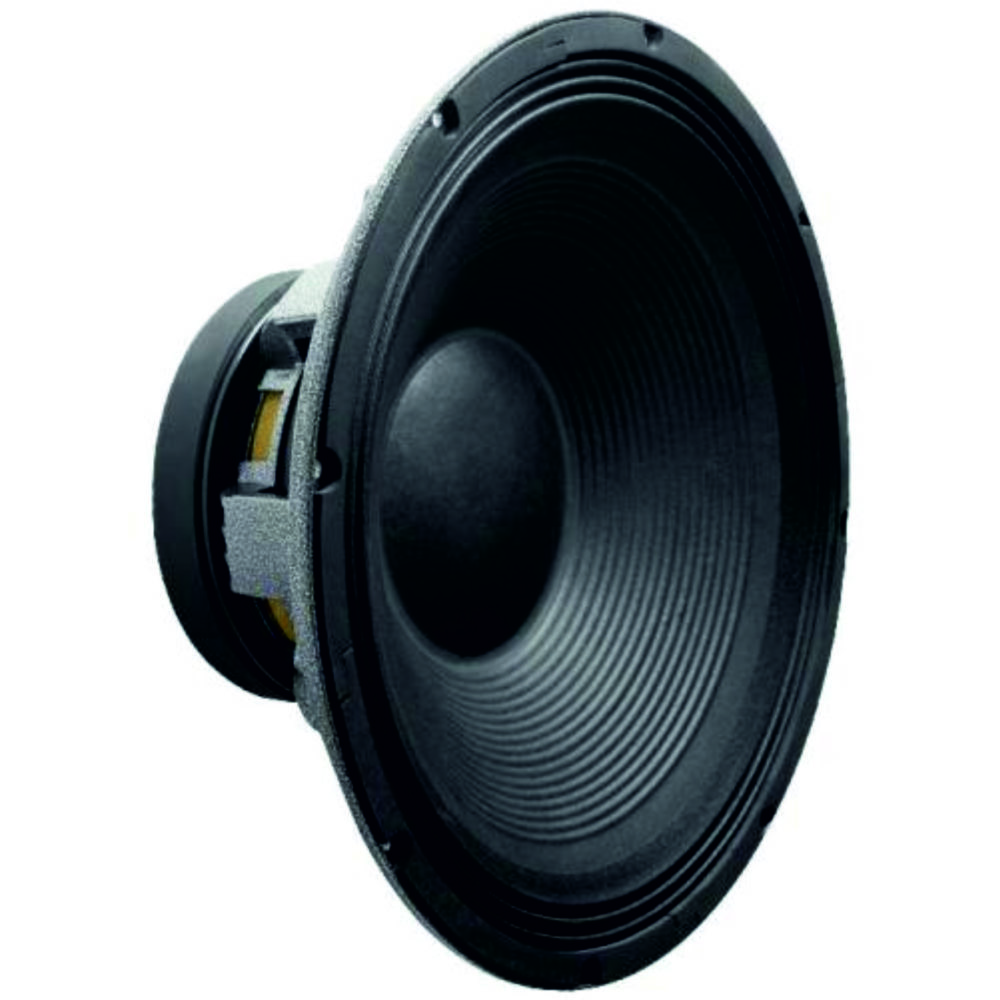 SUBWOOFER 15″ 800W RMS